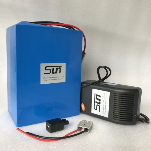 72V24AH Li-ion BATTERY (WITH 5A CHARGER)