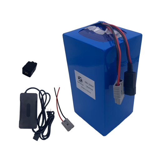 48V24AH(32650) LIFEPO4 BATTERY (WITH 4A CHARGER)